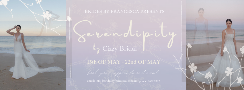 Cizzy Trunk Show Banner